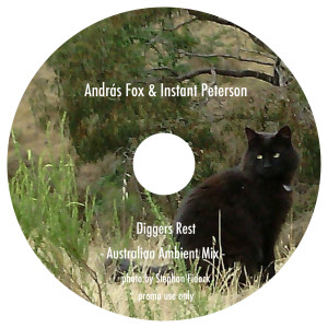 Andras Fox mix for disk union label